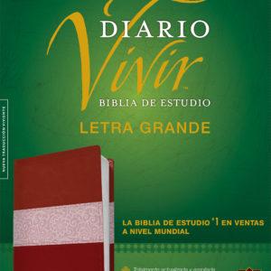 Biblia de estudio del diario vivir NTV, letra grande